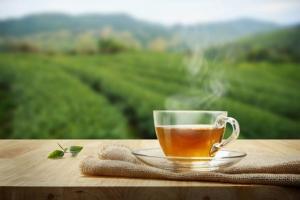 Rượu vang đỏ, trà hay cà phê thì có lợi hơn cho cơ thể?